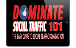 How To Get And Dominate Social Traffic 101